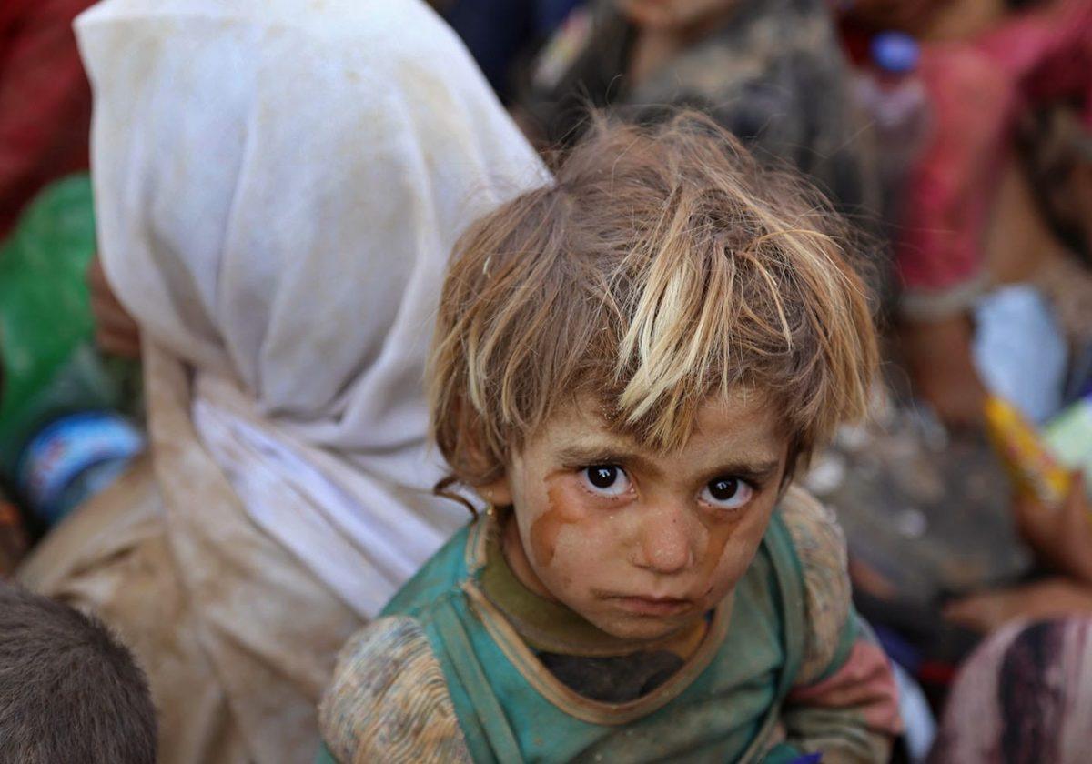 yazidis in syria
